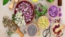 علاج التهاب الدم بالأعشاب