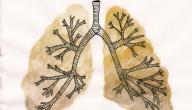 ماهو علاج مرض ذات الرئة