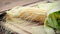 ما هي فوائد شعر الذرة