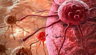 أسباب السرطان