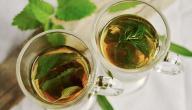 مشروبات لعلاج الانتفاخ