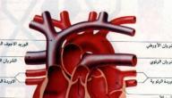 اعراض ضيق صمام القلب