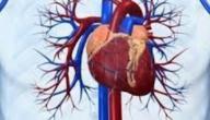 ادوية القلب والاوعيه الدمويه