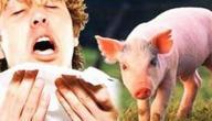 طرق الوقاية من انفلونزا الخنزير