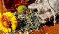علاج تضخم الغدة الدرقية بالاعشاب