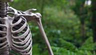 اعراض التهاب العظام