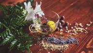 كيفية زيادة هرمون البروجسترون بالاعشاب