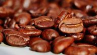 ما هي فوائد القهوة