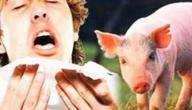 اعراض انفلونزا الخنزير عند الانسان
