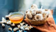 فوائد الثوم مع العسل على الريق