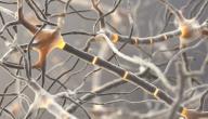 أعراض مرض الأعصاب