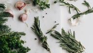 12 نبات مضاد للفيروسات