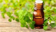 9 فوائد لزيت الأوريجانو
