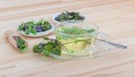 أعشاب تؤثر على فعالية حبوب منع الحمل