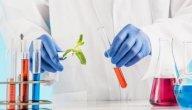 ماذا تعرف عن الهندسة الوراثية؟
