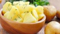 فوائد البطاطا المسلوقة: هل تختلف عن فوائد البطاطا المقلية؟