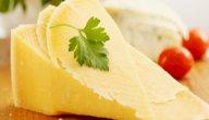 أضرار الجبنة الرومي: هل تسبب الإصابة بالسرطان حقًا؟