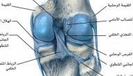 التهاب غضروف الركبة