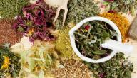 علاج هرمون الحليب بالأعشاب الطبيعية