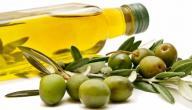 بحث عن فوائد زيت الزيتون