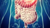 ماهو علاج القولون العصبي؟