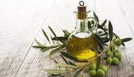 هل يمكن علاج القمل بزيت الزيتون؟