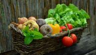 برامج التغذية للتخسيس