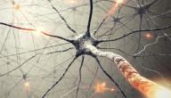 التهاب العصب الثالث للعين