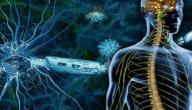 مرض التصلب العصبي