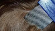 علاج حشرات الشعر