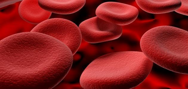 ضعف الدم وعلاجه