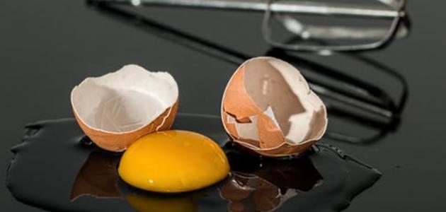 ماهي فوائد صفار البيض للشعر