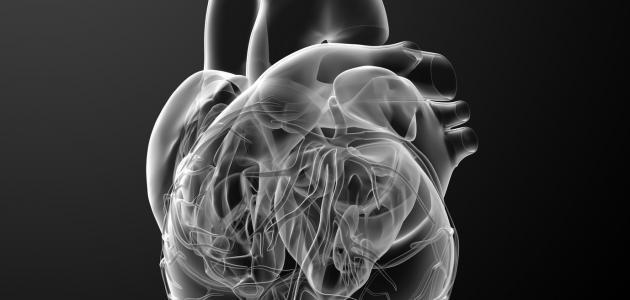 مرض انتفاخ القلب