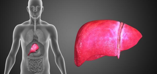 علاج مرض تشمع الكبد بالأعشاب