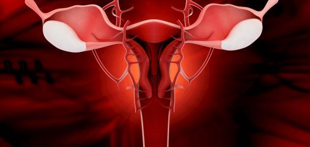 افرازات الرحم اثناء الحمل