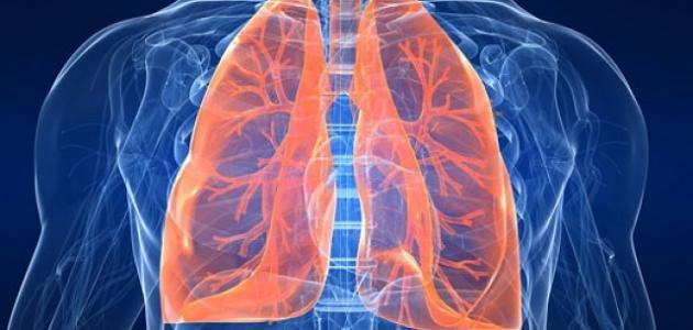 الفرق بين تليف الرئة وسرطان الرئة