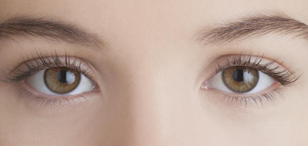 الفرق بين جفاف العين وحساسية العين