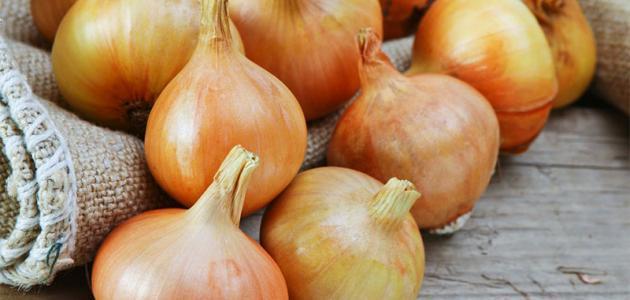 فوائد البصل للبشرة الدهنية