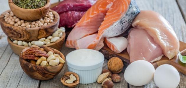 أنواع البروتينات في جسم الإنسان
