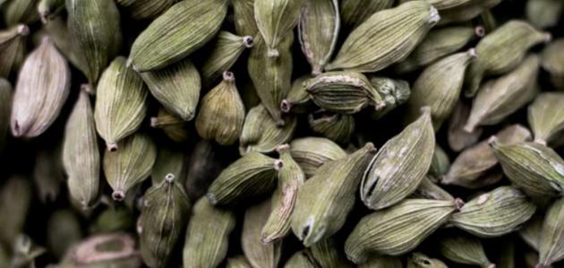 أفضل علاج لضغط الدم المرتفع بالأعشاب