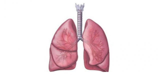 اسباب جلطة الرئة