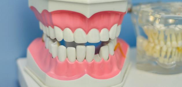 ما هي أمراض الفم واللثة
