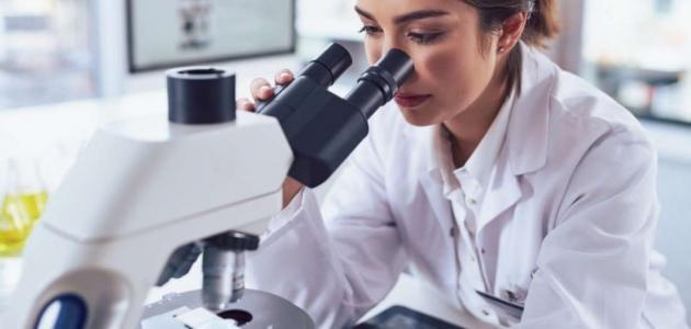 أنواع خلايا الدم البيضاء