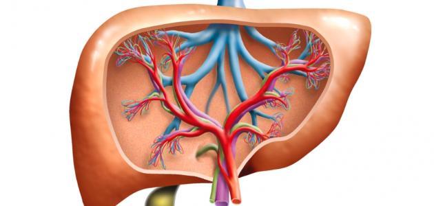 اعراض الكبد الدهن