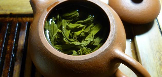 فوائد الشاي الاخضر للكرش