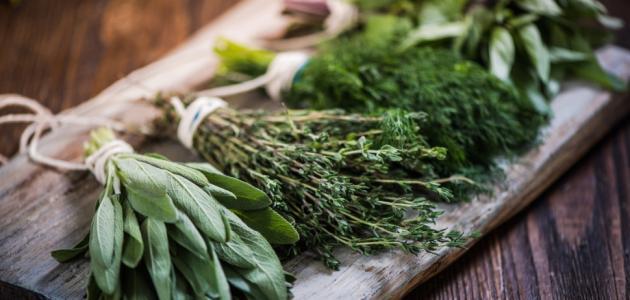 دواء المعدة بالاعشاب
