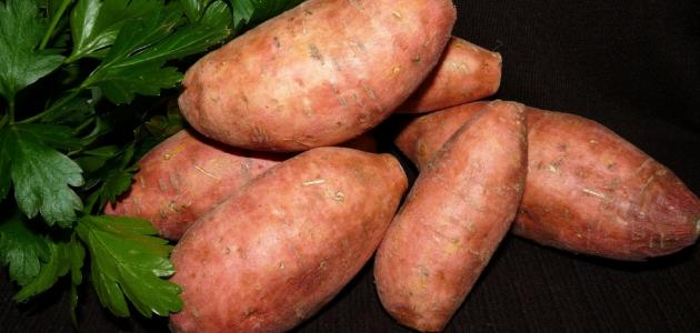 فوائد البطاطا الحلوة للأطفال
