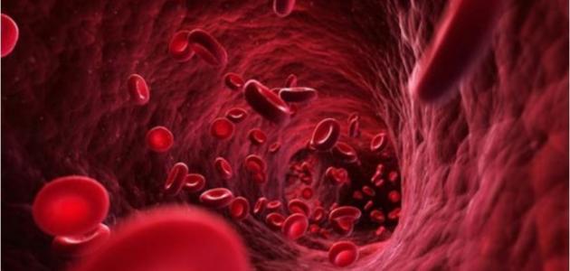 سرطان الدم الليمفاوي المزمن