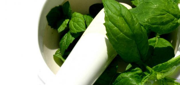 علاج اليرقان بالأعشاب
