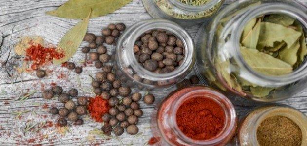 علاج سيولة الدم بالاعشاب